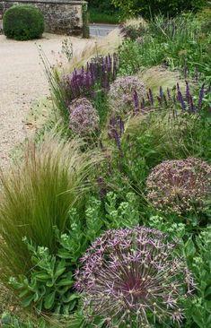 Sedum, Salvias, Origanum, Erigeron, and Stipa gigantea