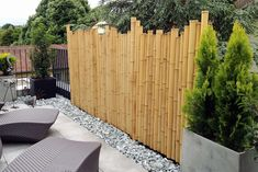 great backyard privacy fence design ideas to get inspired 9 Diy Privacy Screen, Balcony Privacy, Privacy Fence Designs, Backyard Privacy, Diy Pergola, Backyard Landscaping, Indoor Bamboo Plant, Bamboo Plants, Ideas Terraza