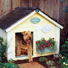 I don't want my doggie sleeping outside but this would be SO cute in a backyard for my pup to rest in during the day