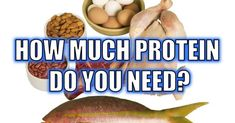 """http://ift.tt/2sKywS1 ==>How Much Protein Do You Need Per Day?How Much Protein Do You Need Per Day : http://ift.tt/2tIjJbT  How Much Protein: A Behind-The-Scenes Look At One Of The Fitness Industries Most Well-Kept Secrets From An Ex-Protein Supplement Developer And Research Scientist who agreed to 'reveal it all' Discover the Honest Research-Proven Answer to the Question """"How Much Protein do I Need to Build Muscle?"""" Do you really need to eat extra protein? Discover if you're being ripped…"""