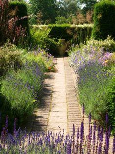Top 10 Mediterranean Garden Designs | lavender herb garden | jardin d'herbes aromatiques