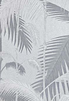 Palm Jungle Wallpaper Contemporary Illustrated Palm tree design textured wallpaper in metallic Silver with White and Grey design.