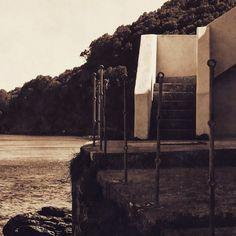 #corse #corsica #vintage #ancient #oil #stair #sea #sealife #meria #house #indoor #outdoor #trees #landscape #nature #instamoment #inspiration #novellaorchidea #novella #orchidea #raccontierotici #racconti #ebook #ricardo #tronconi #eroticnovel