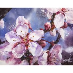 Lin Ching Che (@lin_chingche) в Instagram: #art #artist #watercolor #painting #cherry #blossom #flowers #art #watercolor #painting #paint #pink #watercolour #draw #drawing #flower #flowers #цветы #watercolor #watercolour #aquarelle #waterblog #worldofartists #drawing #painting #art #artist #artshelp #artgallery #artweinspire #topcreator #inspiringwatercolors #inspiration #flowers #botanical #botanicalart #illustration #акварель #вдохновение #иллюстрация #pink