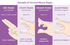 Getting Pregnant Tips, Cervical Mucus, Pregnancy Info, Pregnancy Signs, Early Pregnancy, Endometriosis Awareness, Magic Day, Natural Birth Control, Menstrual Cycle
