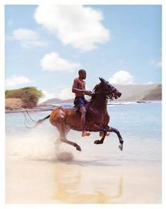 Horeseback riding in St. Lucia, Caribbean