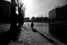 ARCHIVES JOURNAL PHOTO, il y a 5 ans: «Promenade» La PHOTO du Jour du 11 février 2008