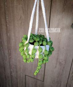 Plant Hanger, Ideas Para, Crochet Baby, Wonderland, Diy Crafts, Cactus Plants, Crochet Cactus, Plants, Manualidades