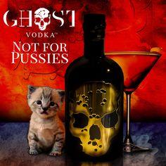 #RaiseAGlass to your #cat today for #NationalPetDay 🍸👻 just make sure he sticks to the milk #GhostVodka #martini #gold #skull #bottle #ghost #vodka #cat #dangerouslybritish #london #vip #bottlesondeck #drinkstagram #drinks #cocktails