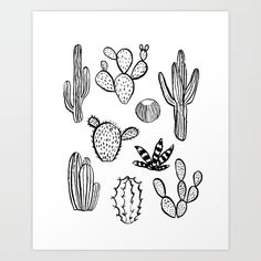 Cactus Desert by Monoo