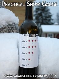 Funny, wine, and pictures: practical snow gauge in. 4 in Tgif, Funny Wine Pictures, Funny Videos, Dog Mom, Wine Drinks, Alcoholic Drinks, Beverages, Cocktails, Just Wine