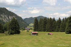 Die Raumfee: Alpe Dornach, Allgäu