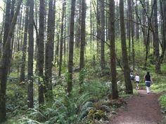 Peavy Arboretum, Hiking area in Corvallis