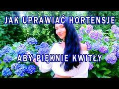 Uprawa hortensji - YouTube Dream Garden, The Creator, Vegetables, Youtube, Wedding, Gardening, Gw, Hydrangeas, Language