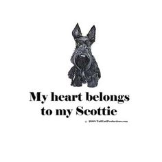 Scottish Terrier Collection : Tail End Productions Dog Art By Cherry ONeill I Love Dogs, Puppy Love, Cute Dogs, Wire Fox Terrier, Terrier Dogs, Animals And Pets, Cute Animals, Funny Animals, Dog Items