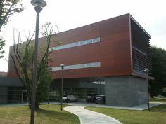 Summer Library _ Verano