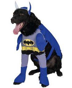 Blue Batman Dog Costume