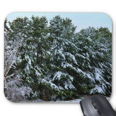 A Grove Of Snow Laden Pine Trees II Standard Mouse Pads by KJacksonPhotography --  Taken 11.03.2014 A grove of snow laden pine trees after a snowstorm off of Mt. Hope Ave in Bangor, Maine. PC:259.300  #mousepad #mousepads #pinetrees #snowladen #winter