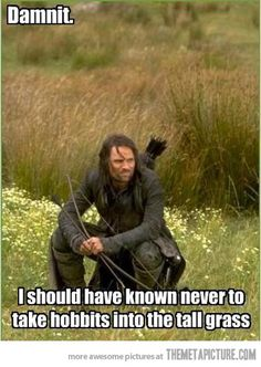 I should have known memes meme lol comedy hilarious humor lmao funny images One Job, Martin Freeman, Don Miguel, Should Have Known Better, O Hobbit, Hobbit Funny, Legolas Funny, Hobbit Humor, J. R. R. Tolkien