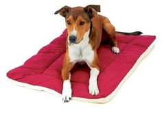 Classic Sleep Ezz Dog Crate Pad - Large/Burgundy