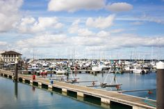 Malahide Marina in July Day Trips, Ireland, Places, Lugares, One Day Trip, Irish