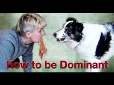 Professional dog training videos created by world renowned trainer Emily Larlham. Dog Training Books, Dog Training Methods, Dog Training Techniques, Training Your Dog, Rottweiler Training, Rottweiler Puppies, Professional Dog Training, German Dog Breeds