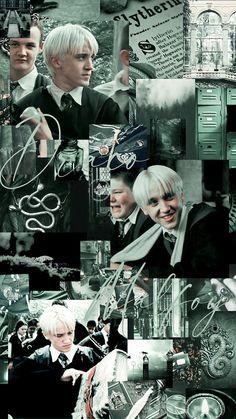 Slytherin Harry Potter, Harry Potter Draco Malfoy, Harry Potter Cast, Harry Potter Characters, Harry Potter Funny Pictures, Harry Potter Tumblr, Harry Potter Pictures, Draco Malfoy Imagines, Draco Malfoy Aesthetic