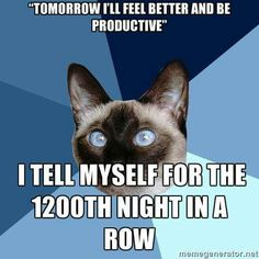 chronic illness cat- This every single day. Perhaps in a secret optimist after all! #endometriosis