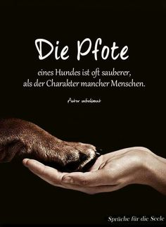 Hand and paw - Simone Wilms - art breeds cutest funny training bilder lustig welpen Dog Quotes Inspirational, Dog Quotes Love, Dog Quotes Funny, Baby Quotes, Motivational, Dogs Trust, Man Humor, True Words, About Me Blog