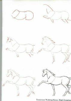At çizimi