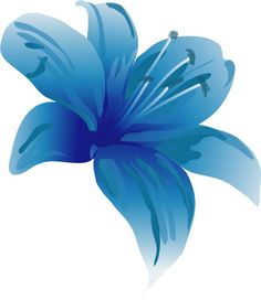 Blue Lily photo poster2.jpg