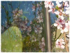 Passages entre les fleurs roses d'amandier et les feuilles vertes de l'opuntia, errances en un paysage d'ailleurs.