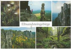 Postcard from Saxony Switzerland, Germany ~ Elbsandsteingebirge ~ Fotos:  Helmut Schulze  http://www.postcrossing.com/about