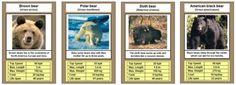 Free Printable Cards, Free Printables, American Black Bear, Sloth Bear, Trump Card, Top Trumps, Animal Games, Classroom Displays, Card Games