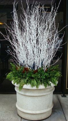 35 Festive Outdoor Holiday Planter Ideas To Decorate Your Front Porch For Christmas Winter White Branches With Evergreens Christmas Urns, Outdoor Christmas Decorations, Winter Christmas, Winter Holidays, Christmas Home, Christmas Wreaths, Contemporary Christmas Decorations, Table Decorations, Winter Decorations