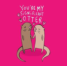 My significant otter. [by Katie Abey] Nerd love.