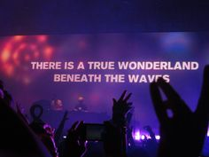 There is a true wonderland beneath the waves