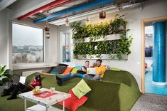 Whimsical Website Offices : Google Offices