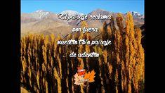 Otoño en Mendoza (con letra) - Mercedes Sosa y Pocho Sosa Mendoza, Folk, Movies, Movie Posters, Art, Argentina, Lyrics, Art Background, Popular