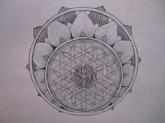 The flower of life tattoo-just beautiful ---> Great tools for light-workers. Description from pinterest.com. I searched for this on bing.com/images