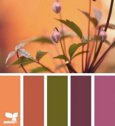 Nature Hues by Design Seeds Scheme Color, Colour Pallette, Color Palate, Colour Schemes, Color Combos, Color Patterns, Design Seeds, Pantone, Wie Zeichnet Man Manga