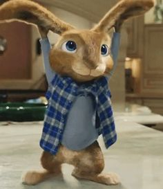 Peter Wright Peter Rabbit GIF-Peter Wright PeterRabbit-Discover & Share GIFs The Effective Pictures We Offer You About GIF A quality picture can tell you many things. You can find the most beautiful p Cartoon Art, Cute Cartoon, Cartoon Characters, Rabbit Gif, Peter Rabbit, Animiertes Gif, Animated Gif, Gifs, Funny Animal Pictures