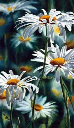 Shasta Daisy Fine Art Reproduction Watercolor Paper by daisies illustration Easy Watercolor, Watercolor Flowers, Watercolor Paper, Art Flowers, Mosaic Flowers, Watercolour Paintings, Watercolor Portraits, Abstract Watercolor, Watercolor Illustration