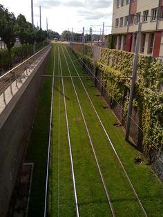 Brno tram Czech Republic, Railroad Tracks, Architecture, City, Arquitetura, Cities, Architecture Design, Bohemia, Train Tracks