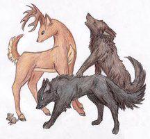 James Potter, Sirius Black, Remus Lupin y Peter Pettigrew.