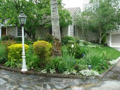 Tropical Landscaping Ideas For Front Of House For Front Yard Landscape