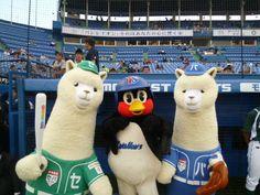Ceka-Paka and Tsubakuro--Japanese mascots are awesome.
