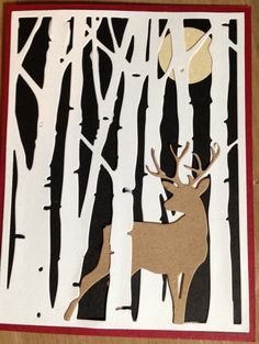 Deer in birch trees by Taylored expressions.