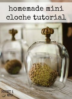 Home Remodel A simple homemade cloche. This mini glass cloche takes seconds to make but gives lasting decorating impact! Home Remodel A simple homemade cloche. This mini glass cloche takes seconds to make but gives lasting decorating impact! Diy Home Crafts, Diy Craft Projects, Craft Ideas, House Projects, Fun Ideas, Decor Ideas, Diy Home Decor On A Budget, Decorating On A Budget, Cloche Decor