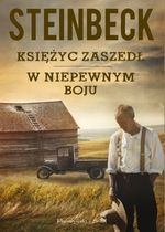 Nowy Steinbeck